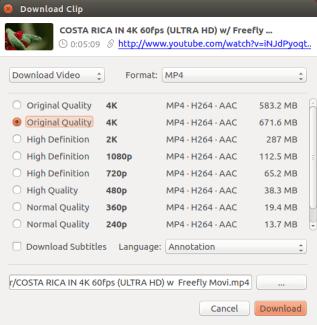 4k video downloader for Linux - choose format
