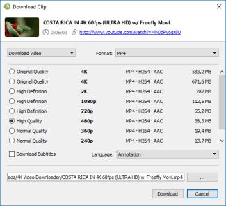 4k video downloader for Windows - choose format