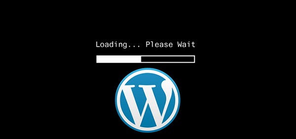 What causes a slow WordPress site